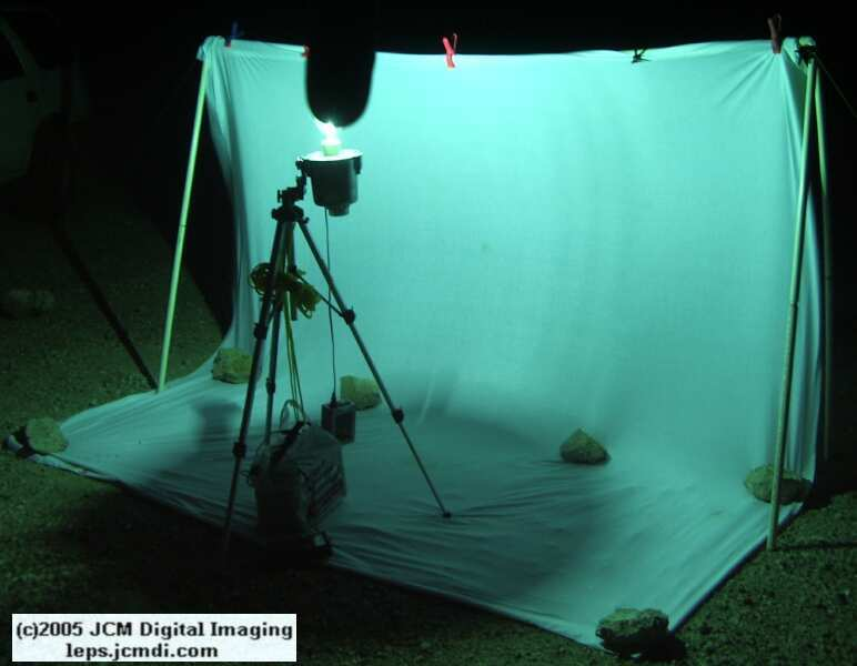 Portable and compact night flying insect collecting sheet rig documentary JCMDI.COM